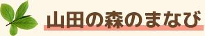山田の森の学び